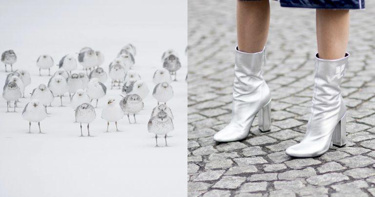 De modekleuren voor de herfst/winter 2018-2019