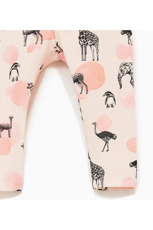 Leggings & Treggings - Zara PIQUÉ LEGGING MET PRINT - In meer kleuren beschikbaar