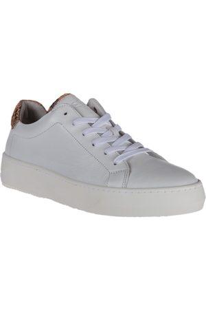 Aqa Shoes M1951