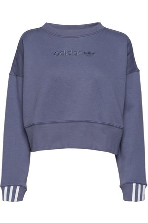 3c70bd3fa95 Vergelijkamp; Koop SweatersKleding Dames nl Maastricht Adidas eWdxorCB