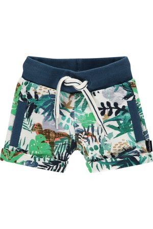 Noppies Shorts Athol
