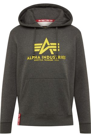 Alpha Industries Heren Sweaters - Sweatshirt 'Basic Hoody