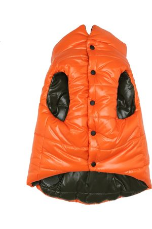 Moncler Exclusive to Mytheresa – Reversible dog down gilet