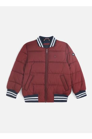Tommy Hilfiger Padded Bomber by