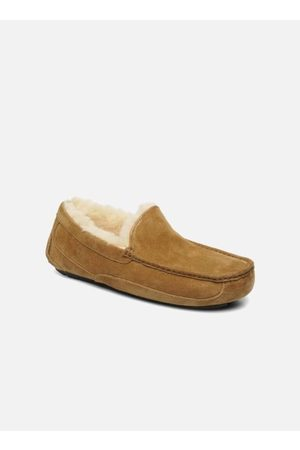 UGG Ascot by