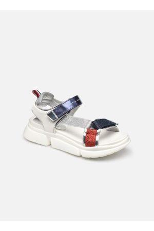 Tommy Hilfiger Velcro Sandal Multicolor by