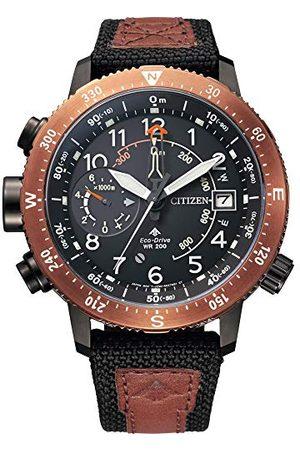 Citizen Watch BN4049-11E