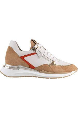 Högl Dames Sneakers - 1-101322, Sneaker Dames 37 EU