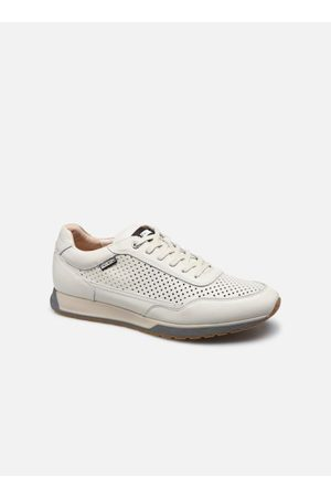 Pikolinos Heren Sneakers - Cambil M5N-6029 by