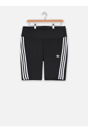 adidas originals Dames Shorts - Short Tight by