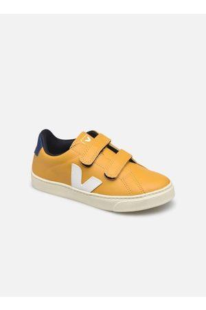 Veja Small Esplar Velcro by