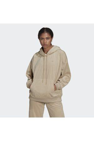Adidas Dames Sweaters - Adicolor Velours Hoodie