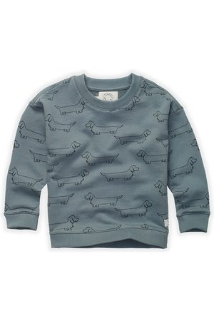 Sproet & Sprout Sweaters - Sweater