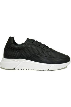 Rehab Heren Sneakers - HEDLEY TRIANGLE