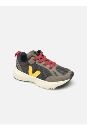 Veja Small Canary by