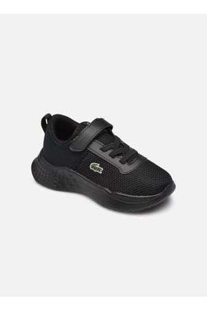 Lacoste Court-Drive Sui by