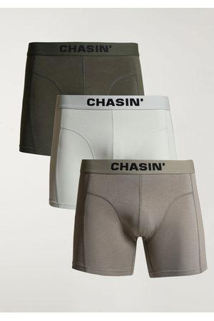 Chasin' Heren Shorts - Thrice Pine