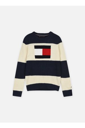 Tommy Hilfiger Heren Sweaters - Flag Colorblock Sweater by